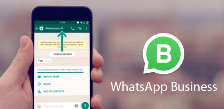 Entenda Como Funciona O Novo Whatsapp Business